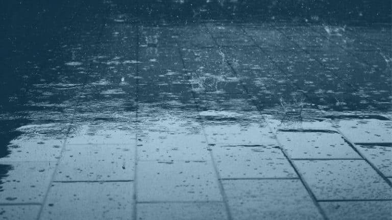גשם על המדרכה